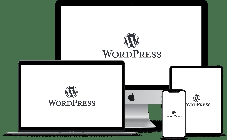papey-werbeagentur-wordpress-agentur-papey